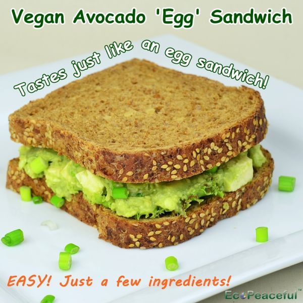 Recipe vegan avocado egg sandwich tastes just like real egg sandwich without eggs - Mayonnaise without eggvegan recipes ...
